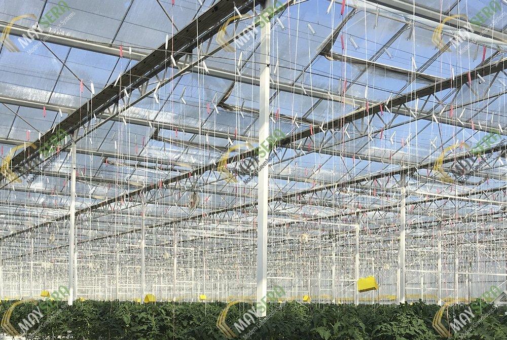 Domates serası bitki askı tel sistemi, bitki askı ipleri   MAYSERA